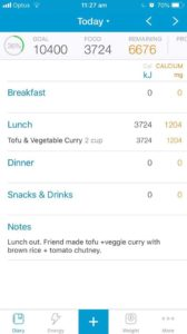 Add notes to Easy Diet Diary